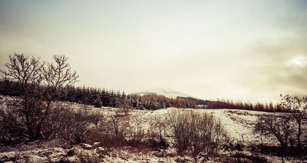 Snow covered landscape of the west highlands of scotland, showing a hill in the background and twiggy trees/shrubs in the foreground